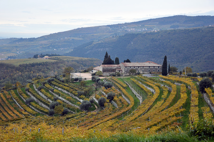 two-amarone-wineries-9